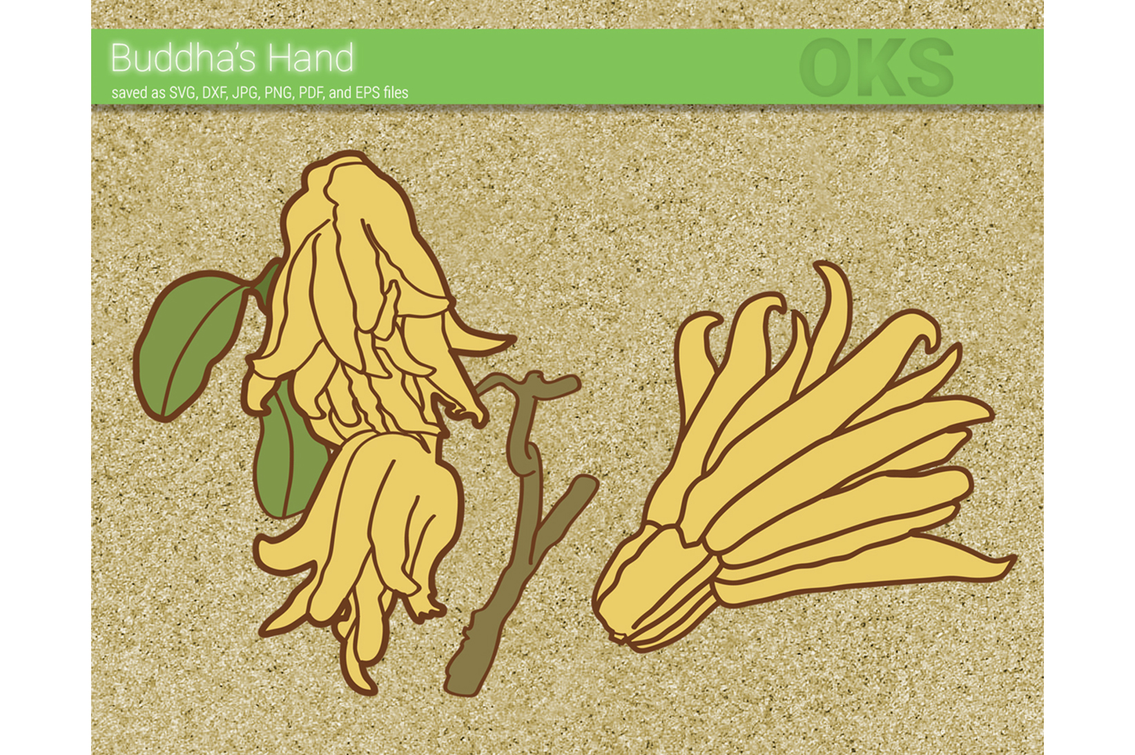 Download Free Buddha Hand Fruit Svg Vector Graphic By Crafteroks Creative SVG Cut Files