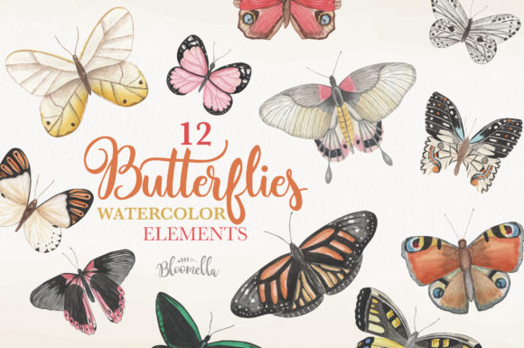 Butterfly Watercolor 12 Clipart Graphic Objects By Bloomella