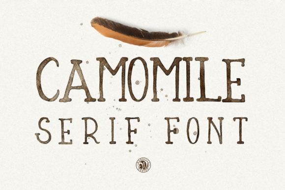 Print on Demand: Camomile Script & Handwritten Font By webvilla - Image 2