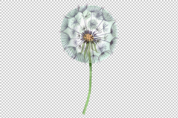 Print on Demand: Dandelion Summer Greeting Watercolor Png Graphic Illustrations By MyStocks - Image 2