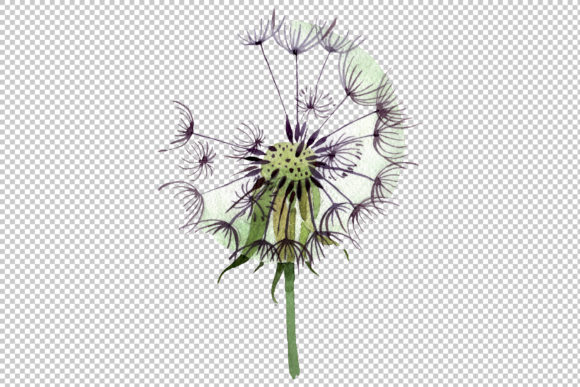 Print on Demand: Dandelion Summer Greeting Watercolor Png Graphic Illustrations By MyStocks - Image 3