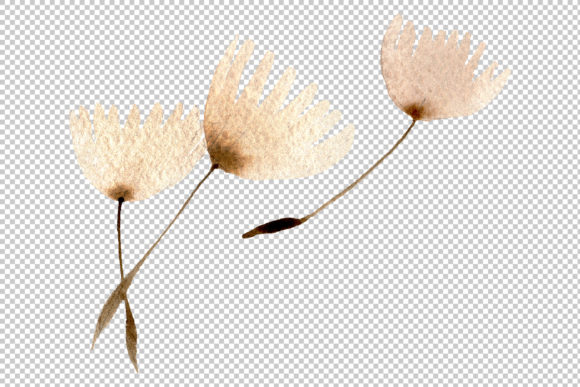 Print on Demand: Dandelion Watercolor   Graphic Illustrations By MyStocks - Image 7
