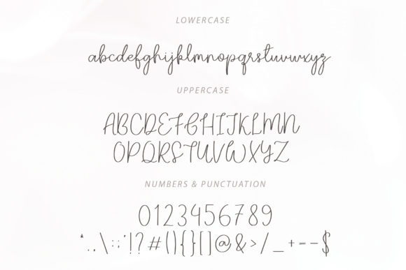 Print on Demand: Darling Script & Handwritten Font By paulhewittype - Image 5