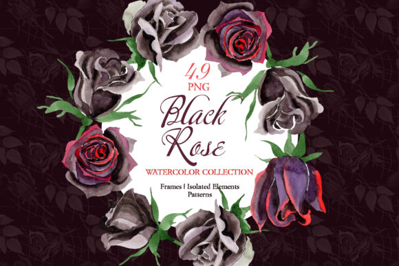 Print on Demand: Exclusive Black Rose Watercolor Png Graphic Illustrations By MyStocks