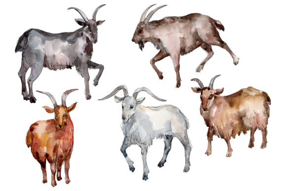 Print on Demand: Farm Animals: Goat Watercolor Png Graphic Illustrations By MyStocks