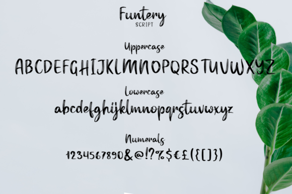 Funtery Duo Font By Pasha Larin Image 9