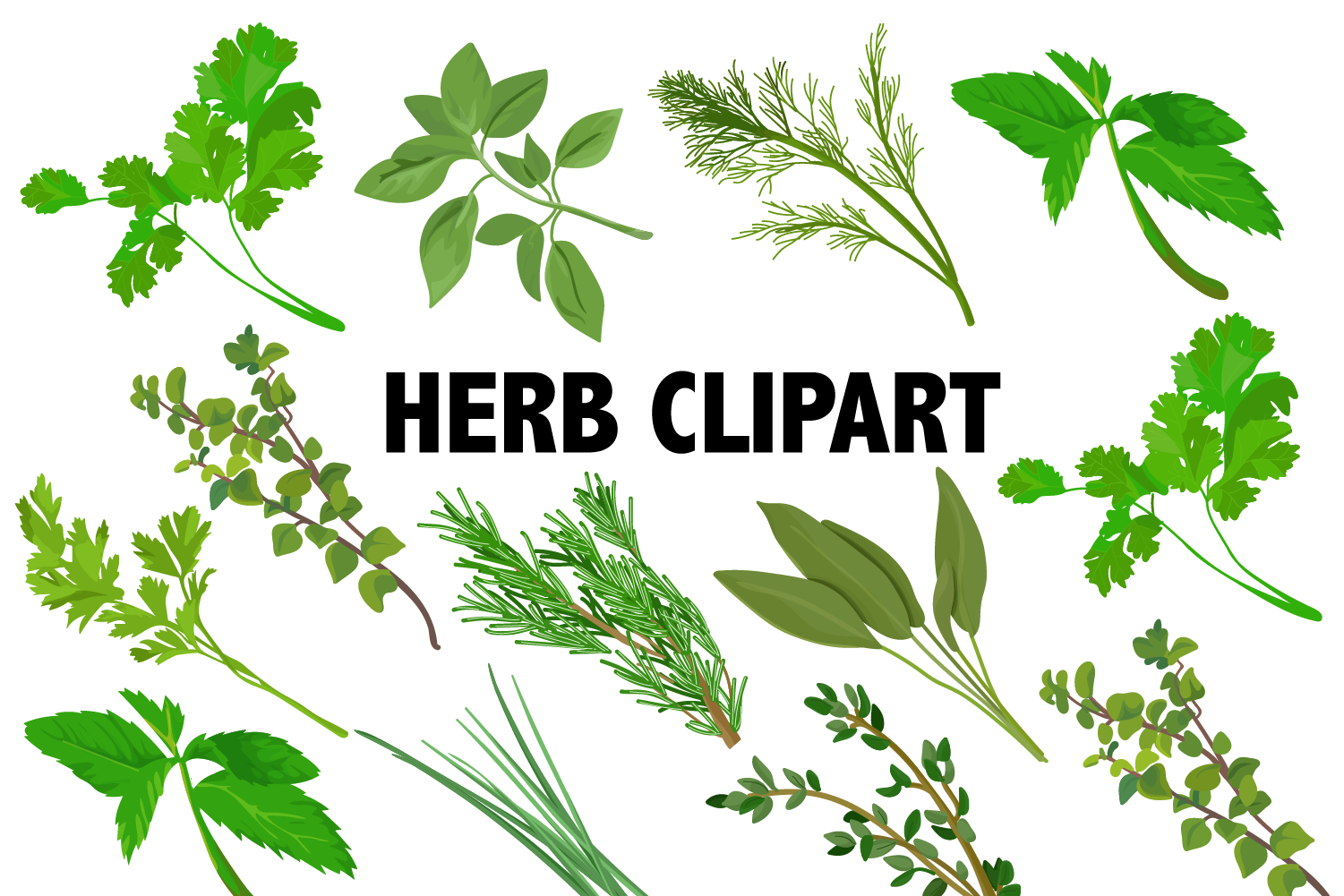 Download Free Herbs Clipart Graphic By Mine Eyes Design Creative Fabrica for Cricut Explore, Silhouette and other cutting machines.