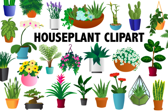 Print on Demand: Houseplant Clipart Graphic Illustrations By Mine Eyes Design