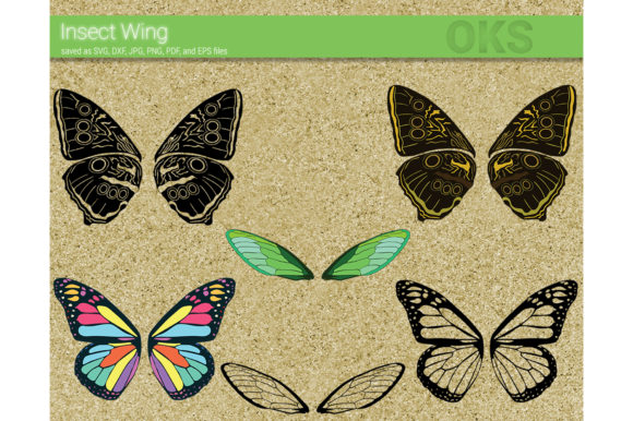 Download Free Insect Wings Vector Graphic By Crafteroks Creative Fabrica for Cricut Explore, Silhouette and other cutting machines.