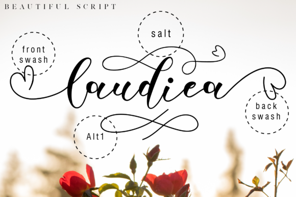Print on Demand: Laudiea Script Script & Handwritten Font By NissaStudio - Image 6