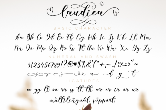 Print on Demand: Laudiea Script Script & Handwritten Font By NissaStudio - Image 7