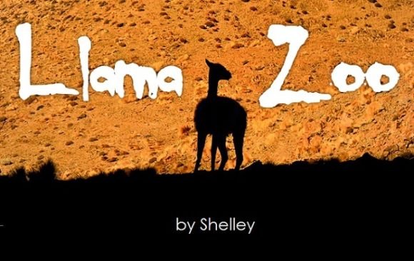 Print on Demand: Llama Zoo Decorative Font By Shelley