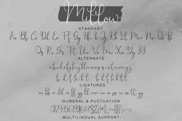 Print on Demand: Millow Script & Handwritten Font By Fridaytype - Image 10