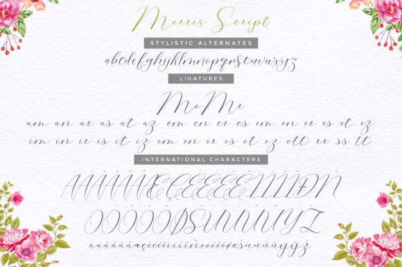 Print on Demand: Morris Duo Script & Handwritten Font By Cooldesignlab - Image 11