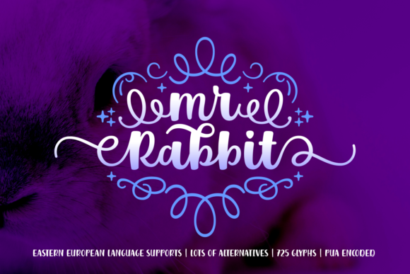 Print on Demand: Mr. Rabbit Script & Handwritten Font By Creative Fabrica Fonts