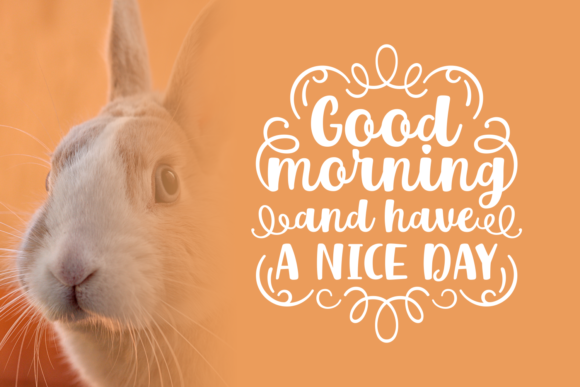 Mr. Rabbit Font Graphic By Creative Fabrica Fonts - Image 2