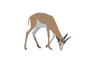 National Animal - Springbok South Africa Craft Cut File By Creative Fabrica Crafts