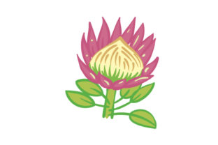 National Flower  Protea South Africa Craft Cut File By Creative Fabrica Crafts