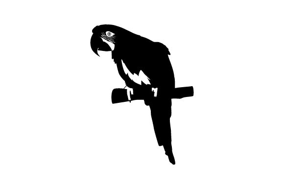 Download Free Parrot Svg Cut File By Creative Fabrica Crafts Creative Fabrica for Cricut Explore, Silhouette and other cutting machines.