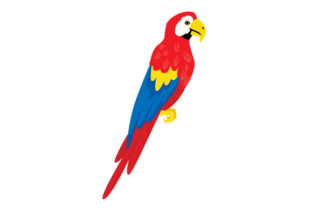 Realistic Parrot Pirates Craft Cut File By Creative Fabrica Crafts