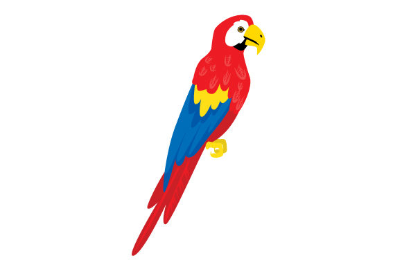Realistic Parrot Svg Cut File By Creative Fabrica Crafts