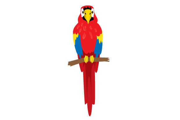 Download Free Realistic Parrot Svg Cut File By Creative Fabrica Crafts for Cricut Explore, Silhouette and other cutting machines.