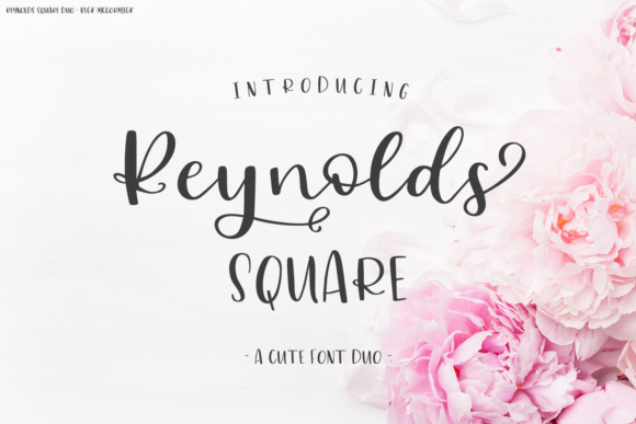 Print on Demand: Reynolds Square Script & Handwritten Font By BeckMcCormick - Image 1