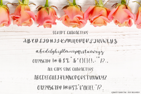Print on Demand: Reynolds Square Script & Handwritten Font By BeckMcCormick - Image 10