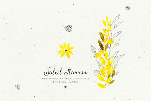 Soleil Flowers Graphic Illustrations By webvilla - Image 5