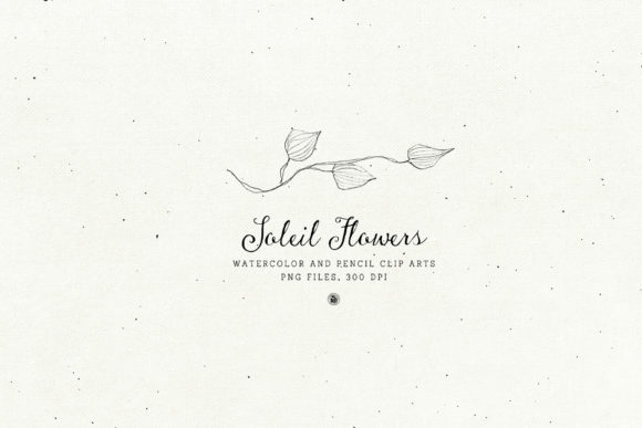 Soleil Flowers Graphic Illustrations By webvilla - Image 6
