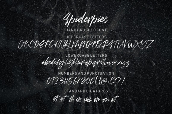 Spiderpies Font By luckytype.font Image 9