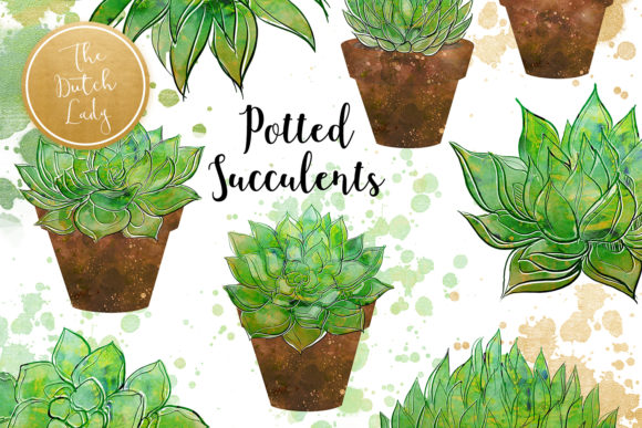 Print on Demand: Succulent Potted Plant Clipart Set Graphic Illustrations By daphnepopuliers