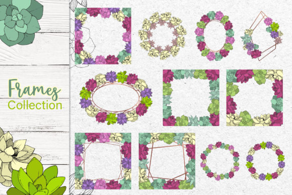 Print on Demand: Succulents Vector Set Graphic Illustrations By MyStocks - Image 4