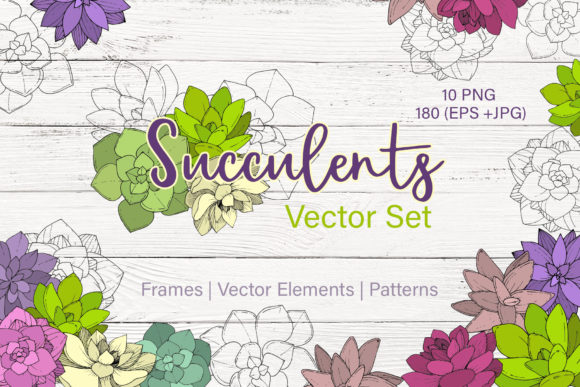 Print on Demand: Succulents Vector Set Graphic Illustrations By MyStocks - Image 1