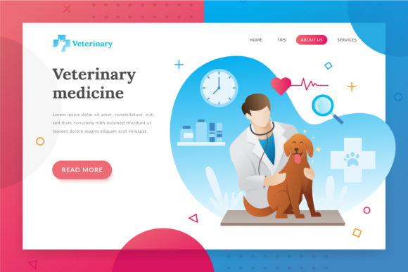 Veterinarian Landing Page Illustration Graphic Websites By Fand