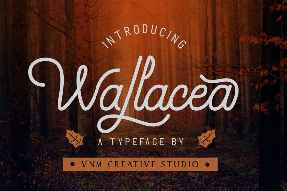 Print on Demand: Wallacea Script & Handwritten Font By VNM Creative Studio