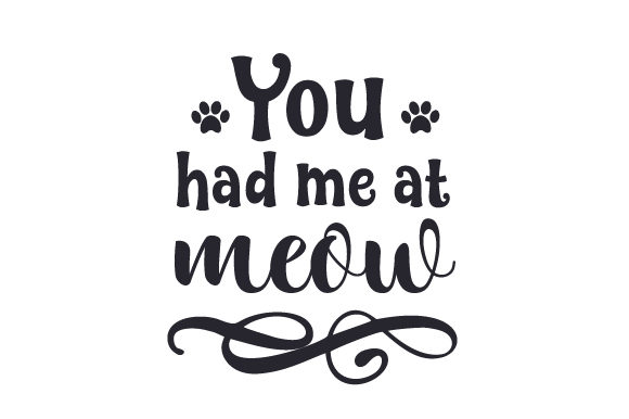 You Had Me at Meow Cats Craft Cut File By Creative Fabrica Crafts - Image 1