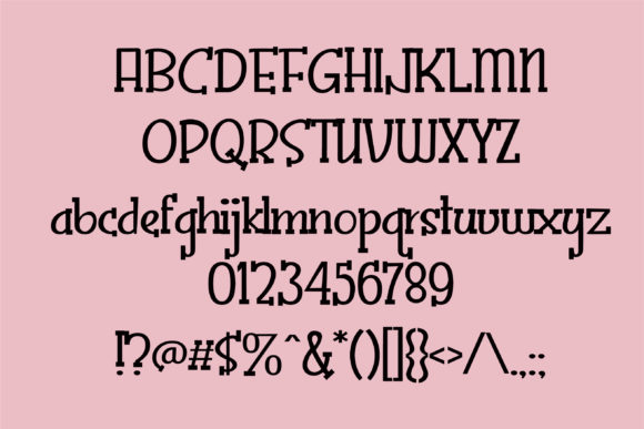 Print on Demand: Zoppity Serif Font By Illustration Ink - Image 2