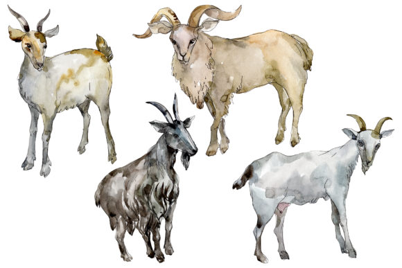 Download Free Agriculture Goat Watercolor Graphic By Mystocks Creative Fabrica for Cricut Explore, Silhouette and other cutting machines.