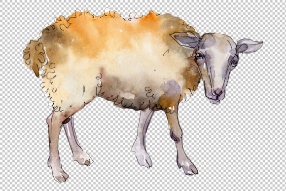 Download Free Agriculture Sheep Ram Watercolor Graphic By Mystocks for Cricut Explore, Silhouette and other cutting machines.