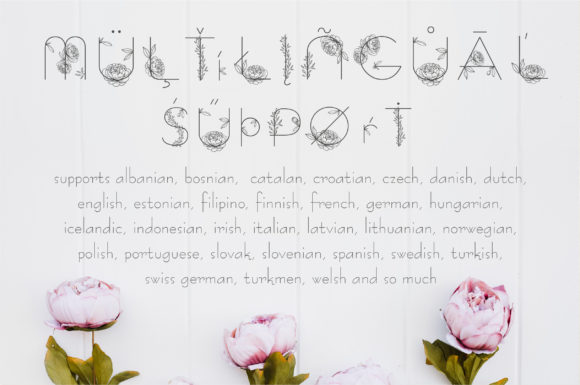 Print on Demand: Amelie Display Font By Alisovna - Image 7
