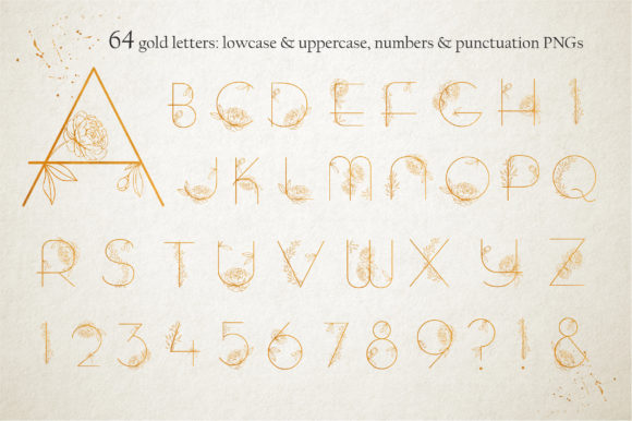 Print on Demand: Amelie Display Font By Alisovna - Image 10