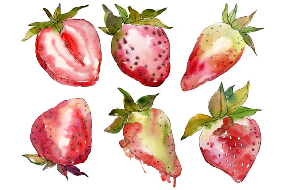 Download Free Berry Strawberry Watercolor Graphic By Mystocks Creative Fabrica for Cricut Explore, Silhouette and other cutting machines.