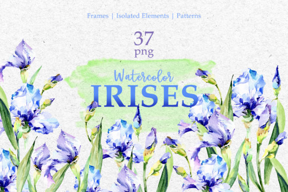 Print on Demand: Blue Watercolor Irises Graphic Illustrations By MyStocks