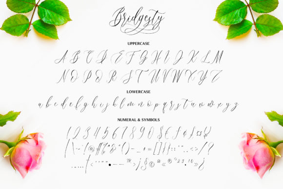 Print on Demand: Bridgesty Script & Handwritten Font By motokiwo - Image 10