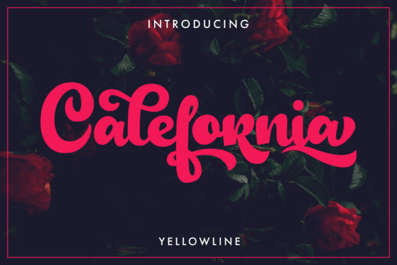 Print on Demand: Calefornia Script Script & Handwritten Font By yellowline