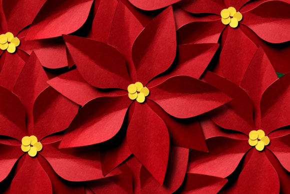 Christmas Poinsettia Flat or 3D Graphic 3D Christmas By DesignedByGeeks