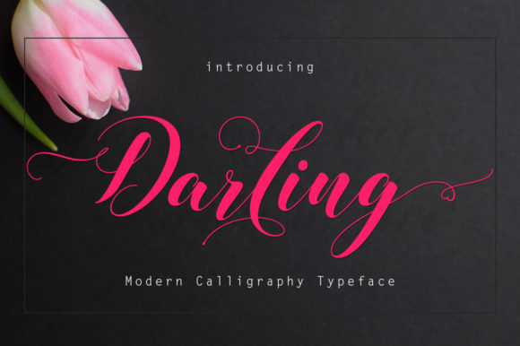 Print on Demand: Darling Script & Handwritten Font By Rudistudio - Image 1
