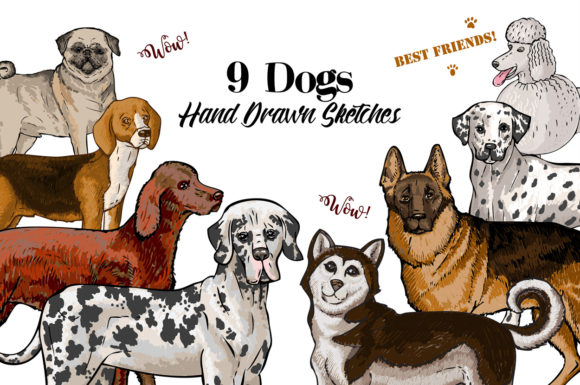 Print on Demand: Dogs Sketches Clipart Graphic Illustrations By natalia.piacheva
