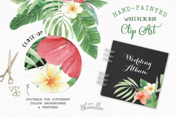 Elements Tropical Package Flamingo Tucan Graphic By Bloomella Image 5